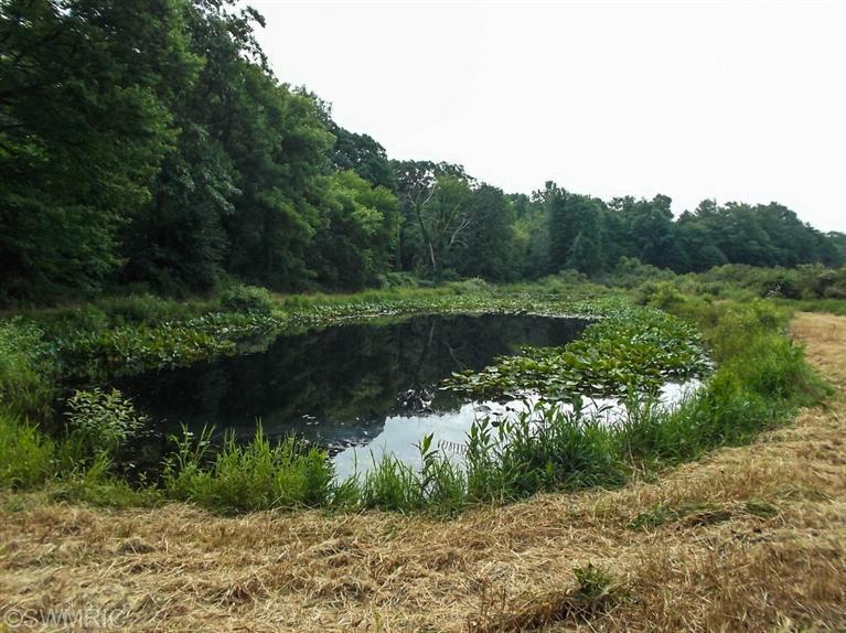 Sister Lakes Rd, Dowagiac, MI 49047
