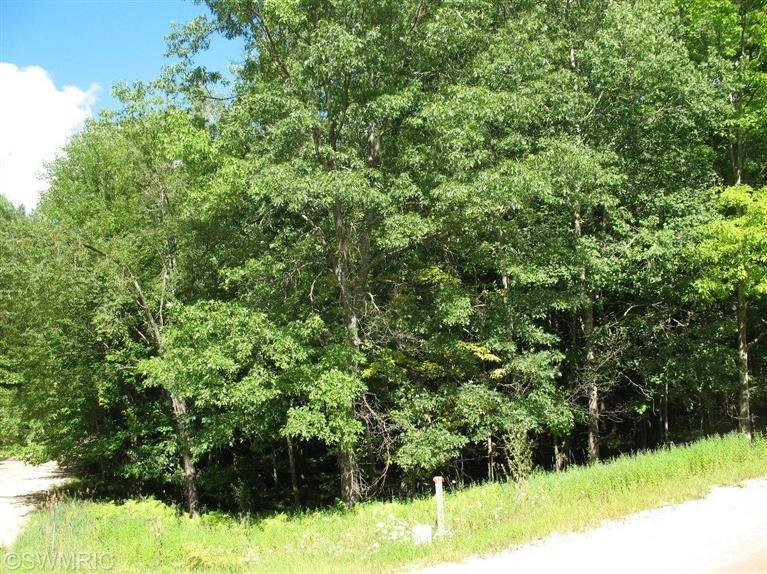 Real Estate for Sale, ListingId: 29544059, Canadian Lakes,MI49346