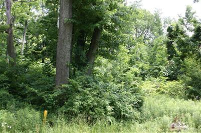 0.5 acres by Lakeside, Michigan for sale