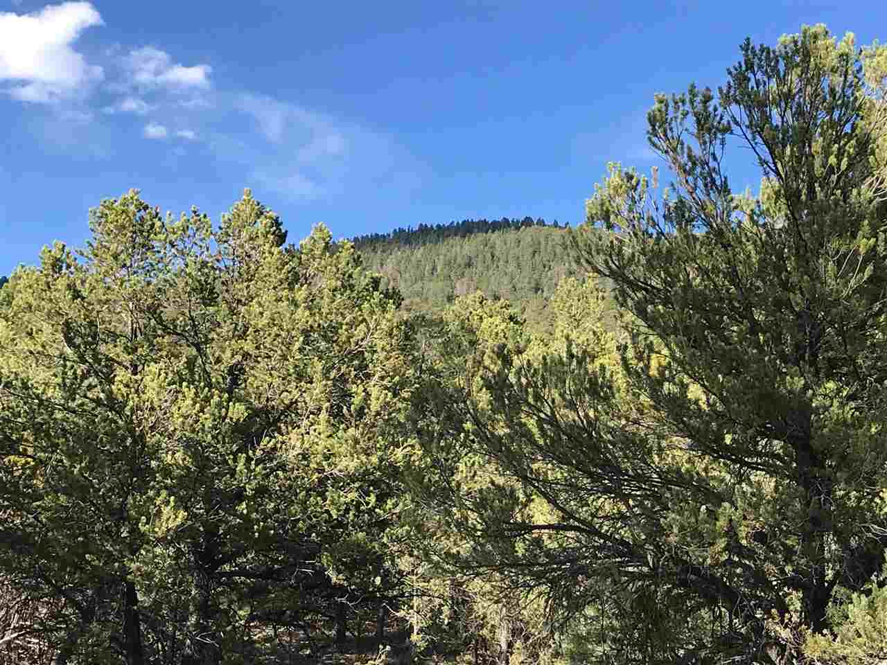 Tract A-2 Turkey Springs Road Valdez, NM 87580