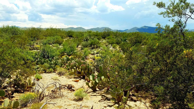 Tbd S Enchanted Valley Road Saddlebrooke, AZ 85739