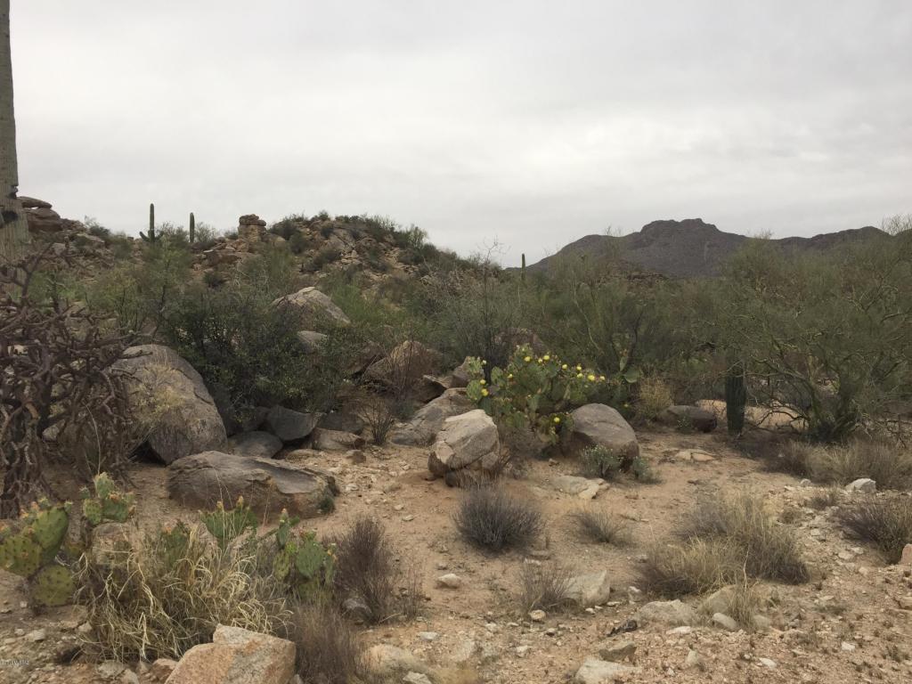 2760 Cougar Canyon Trail Tucson, AZ 85755