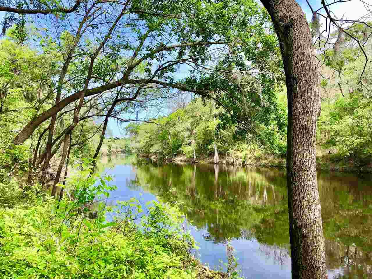 Florida Waterfront Property in Live Oak, Suwannee River, Madison ...