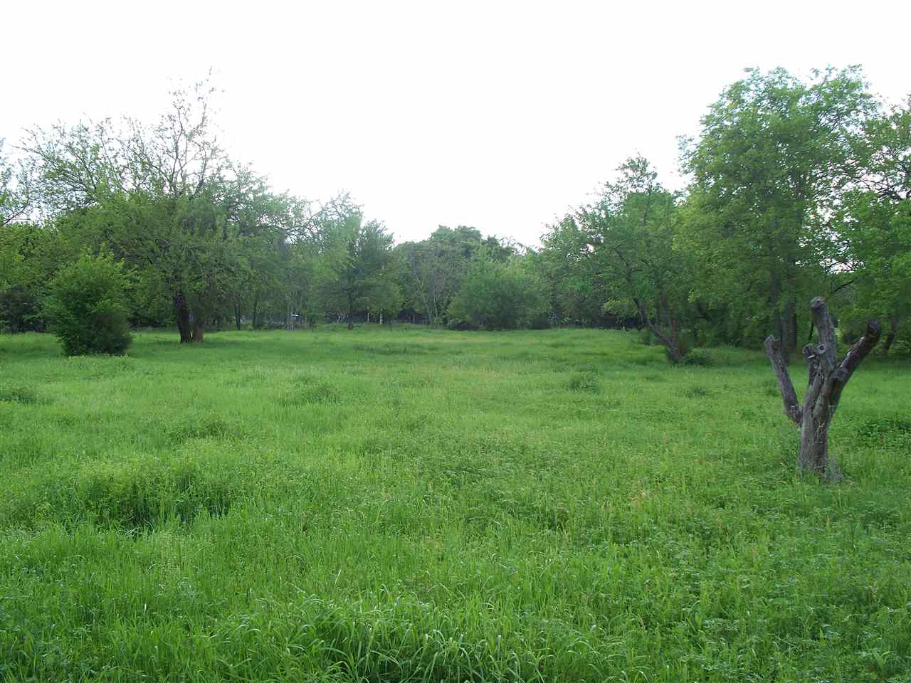 17.47 acres by Coleman, Oklahoma for sale