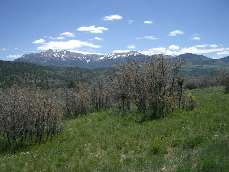 primary photo for tbd 56 V Road, Telluride, CO 81435, US