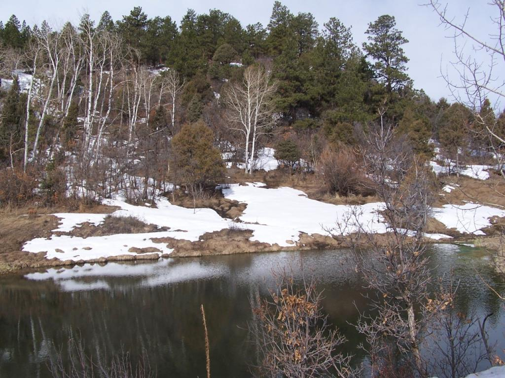 242.8 acres in Ridgway, Colorado