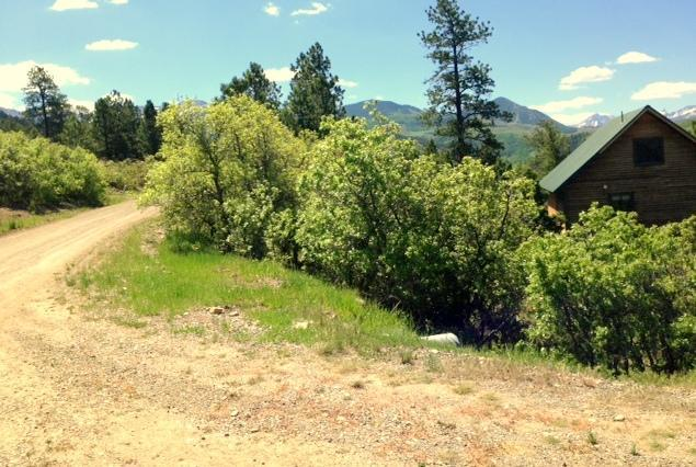 1685 Green Meadows Ln, Placerville, CO 81430