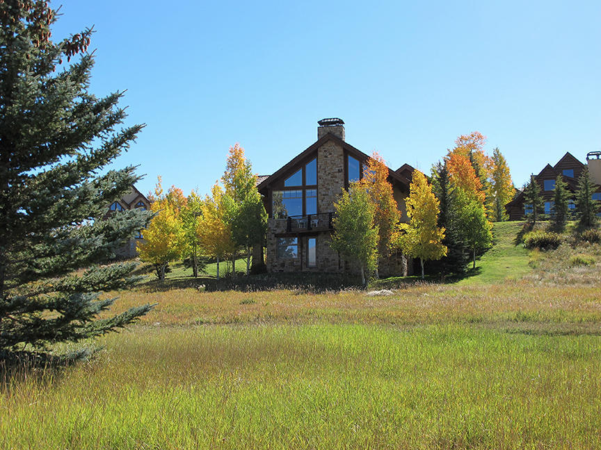317 Fairway Dr, Telluride, CO 81435