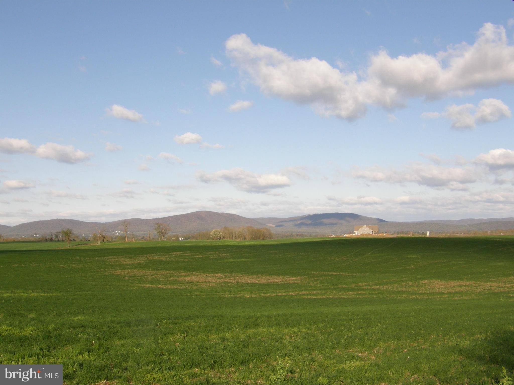 Land - GREENCASTLE, PA (photo 1)