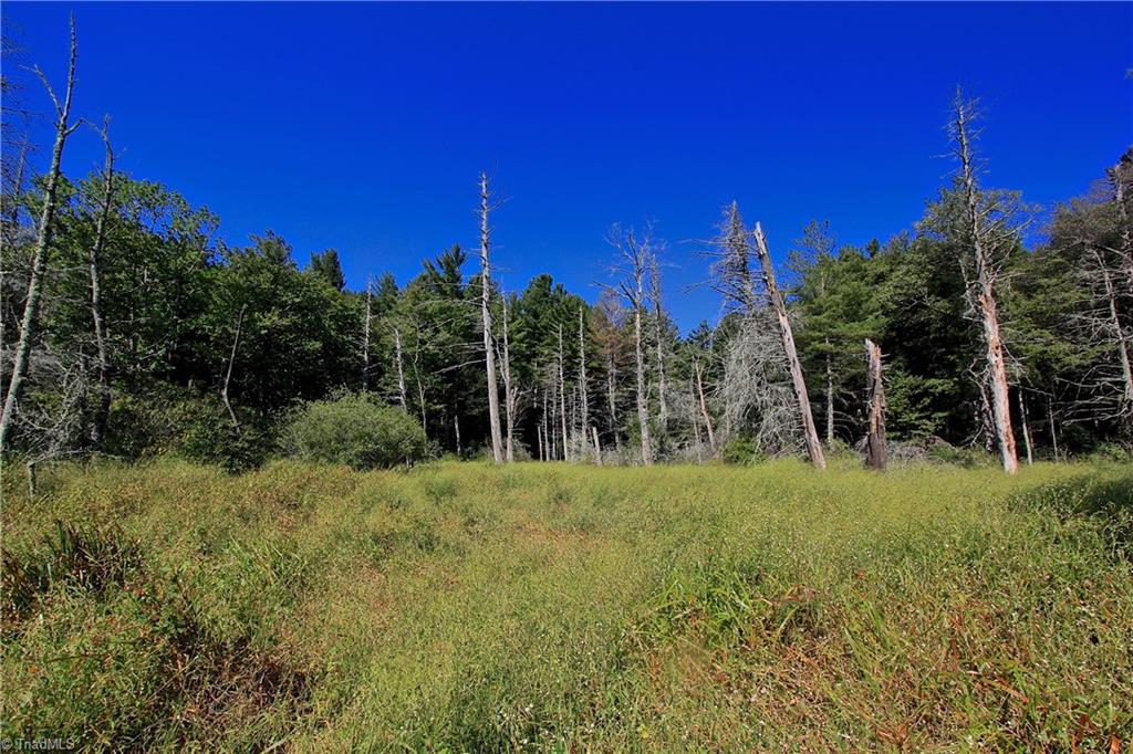 Image of  for Sale near Blowing Rock, North Carolina, in Watauga County: 6.7 acres