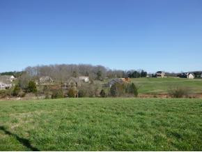 205 Forest Court, Lot 3 - photo 4