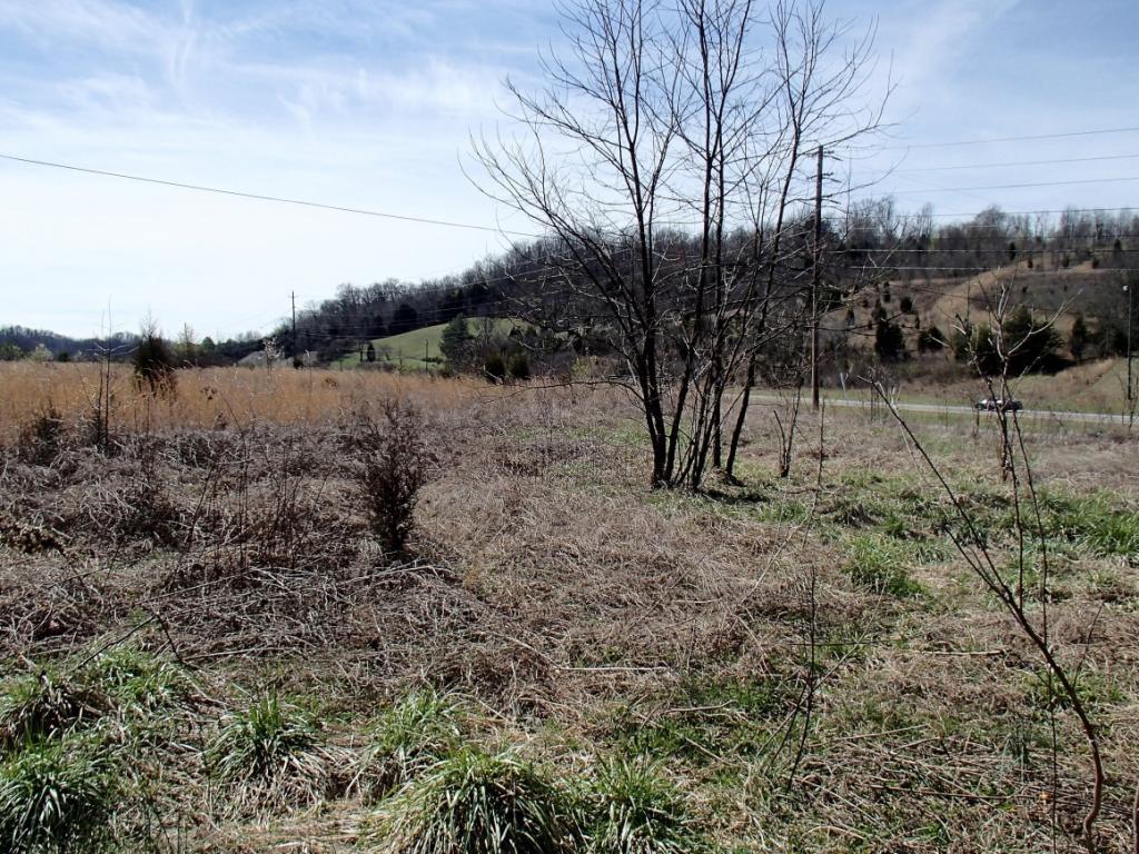 3695 Highway 11E, Bristol in SULLIVAN County, TN 37620 Home for Sale