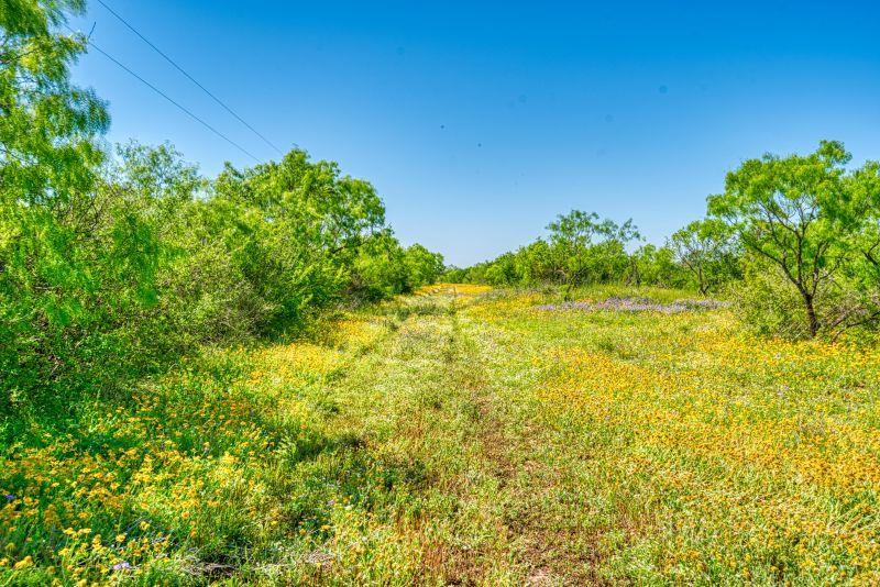 State Hwy. 127 Sabinal, TX 78881