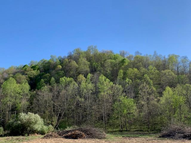 75 Ac. Huffer Road Allons, TN 38541