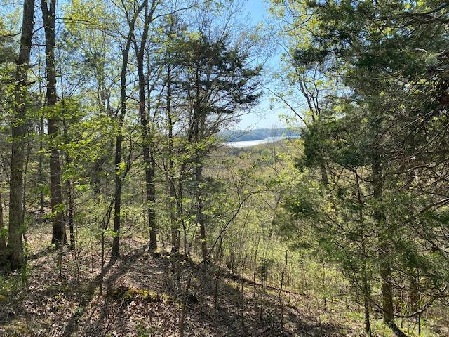 8.61 Ac Willow Lane Allons, TN 38541