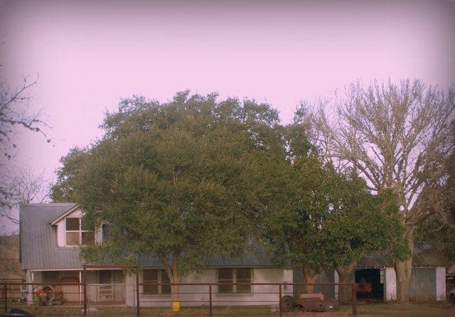 Photo of 914 H Haun Rd  Meyersville  TX