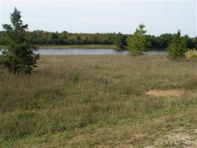 Real Estate for Sale, ListingId: 32086081, Canadian Lakes,MI49346