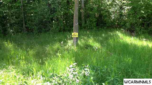 Real Estate for Sale, ListingId: 31777895, Spicer, MN  56288