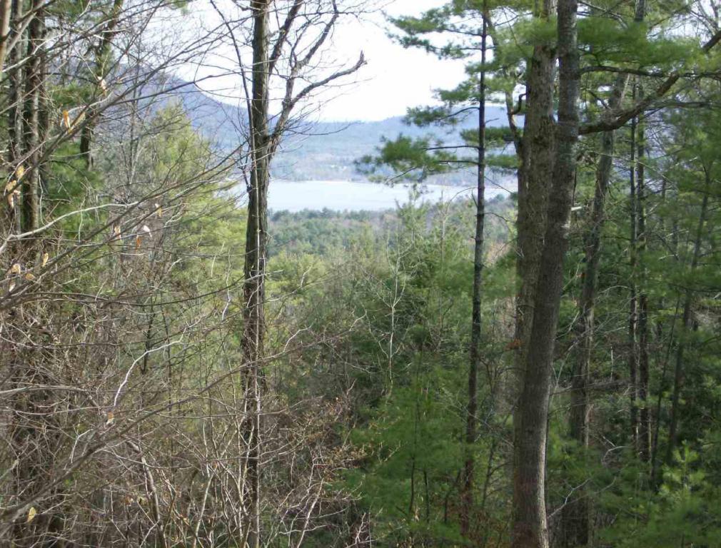 Real Estate for Sale, ListingId: 35992171, Lake George,NY12845