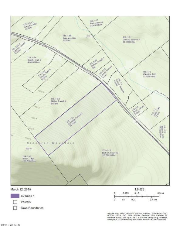 Real Estate for Sale, ListingId: 32245737, Johnsburg,NY12843