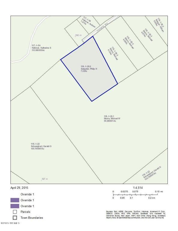Real Estate for Sale, ListingId: 33082029, Johnsburg,NY12843