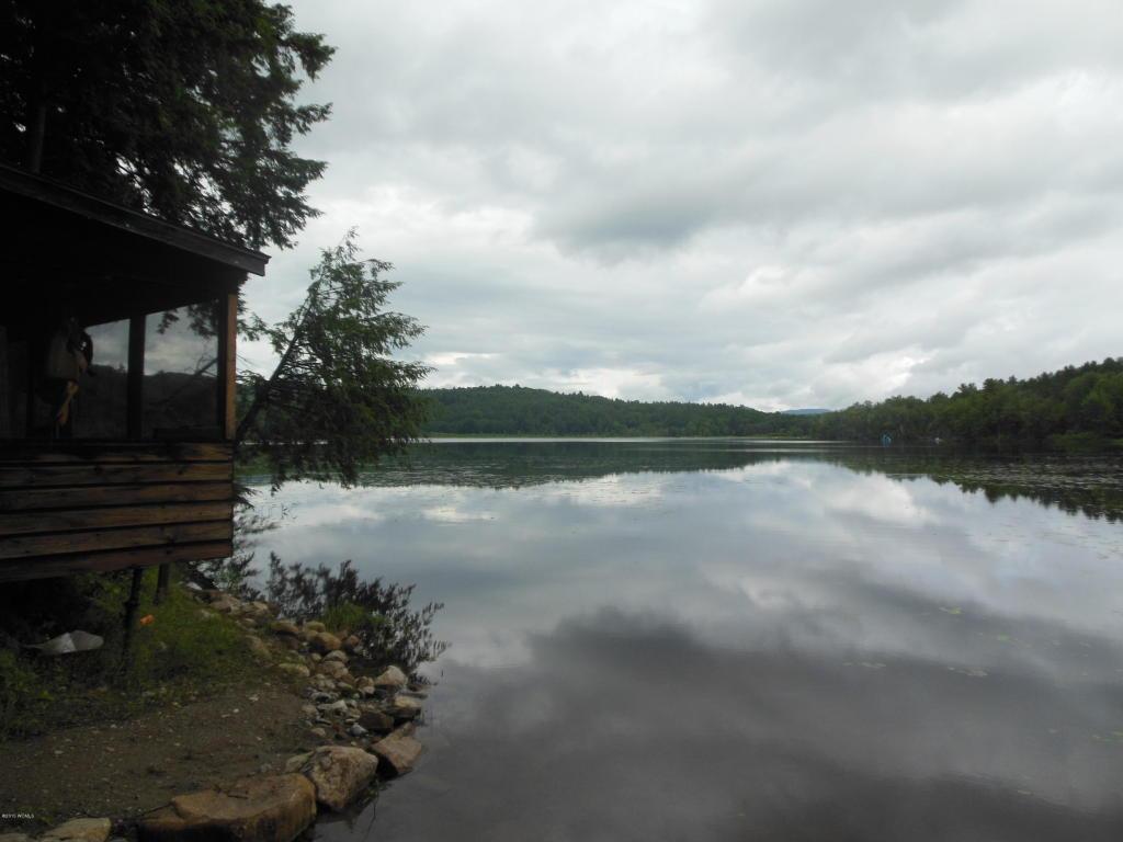Real Estate for Sale, ListingId: 33399497, Adirondack,NY12808