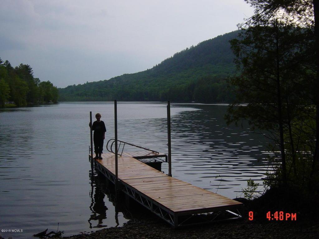 Real Estate for Sale, ListingId: 33820064, Adirondack,NY12808