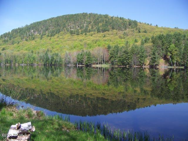 Real Estate for Sale, ListingId: 33862373, Adirondack,NY12808