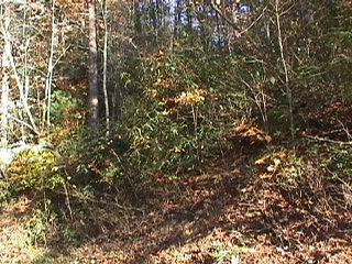 Real Estate for Sale, ListingId: 31766351, N Wilkesboro,NC28659