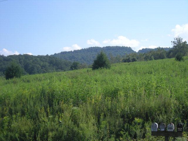 Real Estate for Sale, ListingId: 31766591, N Wilkesboro,NC28659