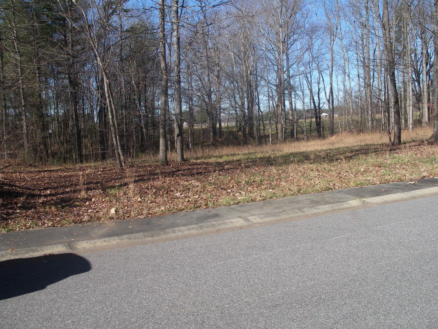 Real Estate for Sale, ListingId: 31766204, N Wilkesboro,NC28659