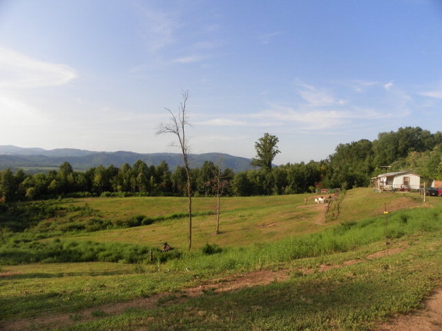 4 acres Traphill, NC