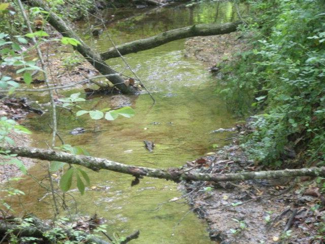 15.33 acres Moravian Falls, NC
