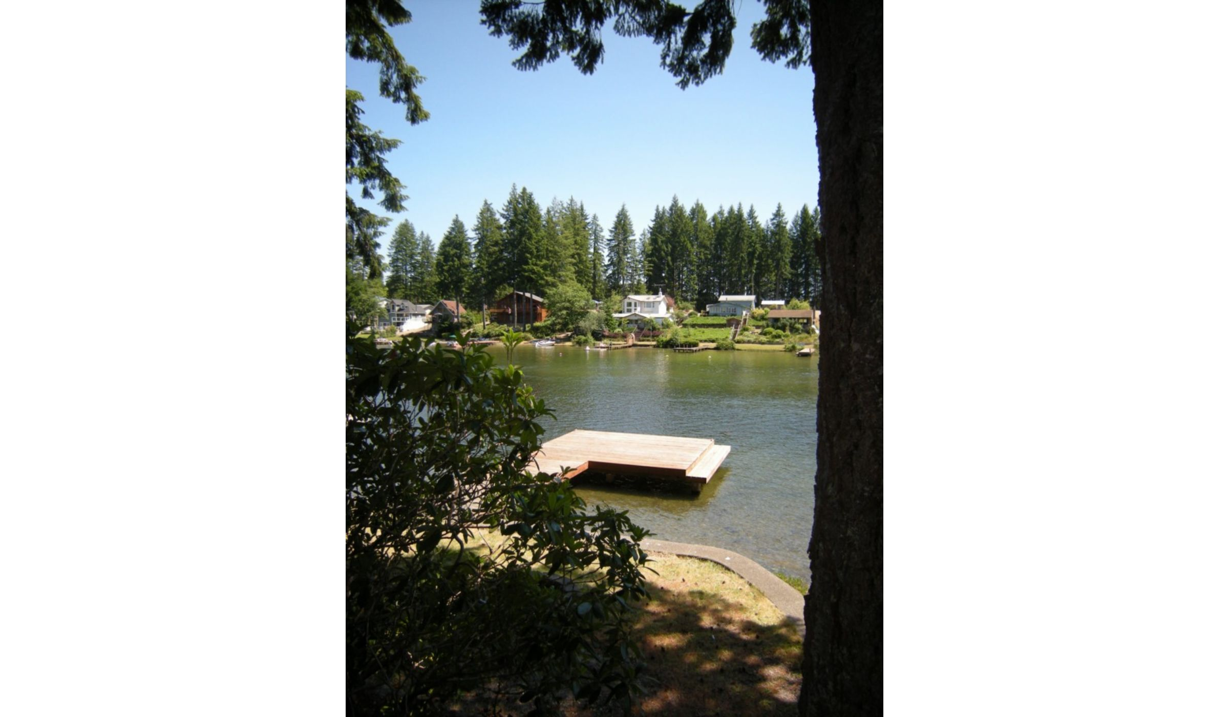 grapeview mature singles Professional singles club has walks, picnics, house parties,  mature landscaping, cherry tree,  grapeview 15 acres sea-sonal fish creek.