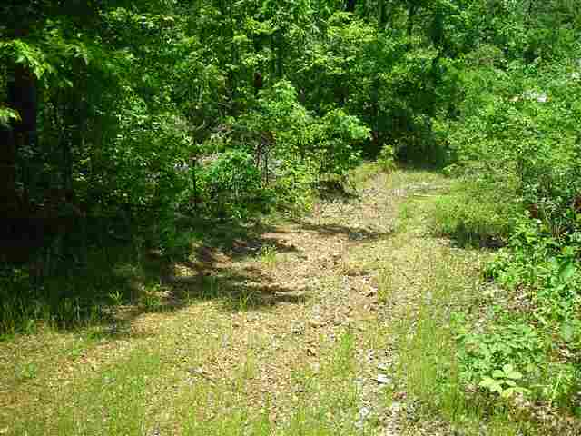 primary photo for 353 Dogwood Trail, Gilbertsville, KY 42044, US
