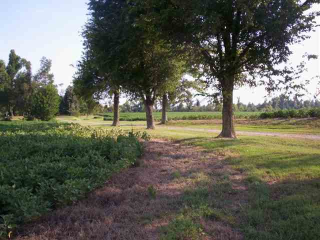 124 acres in Paducah, Kentucky