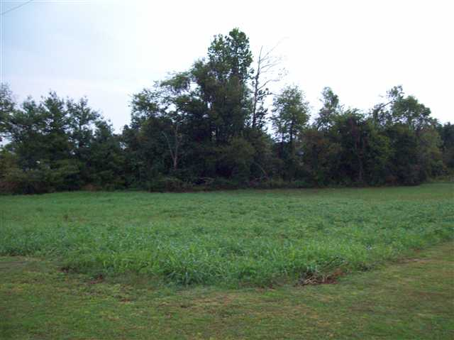 2 acres in Princeton, Kentucky