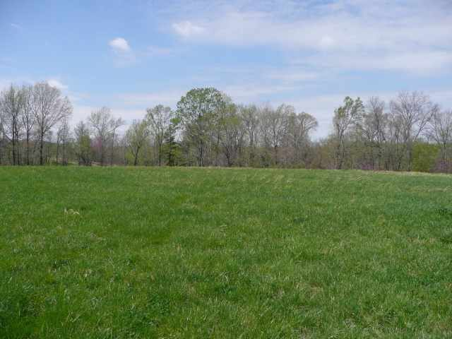 1.5 acres Wickliffe, KY