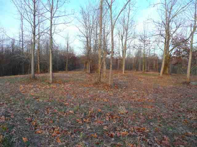 5 acres in Wickliffe, Kentucky