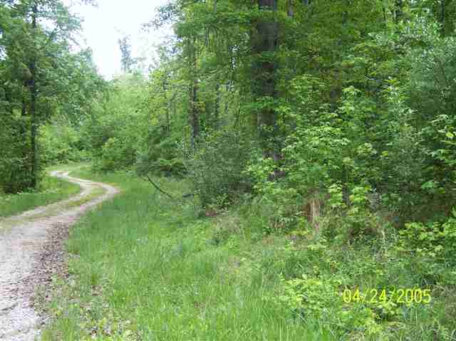 4 acres in Kuttawa, Kentucky