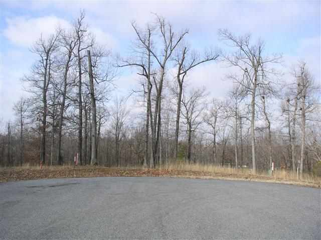 3.6 acres in Benton, Kentucky