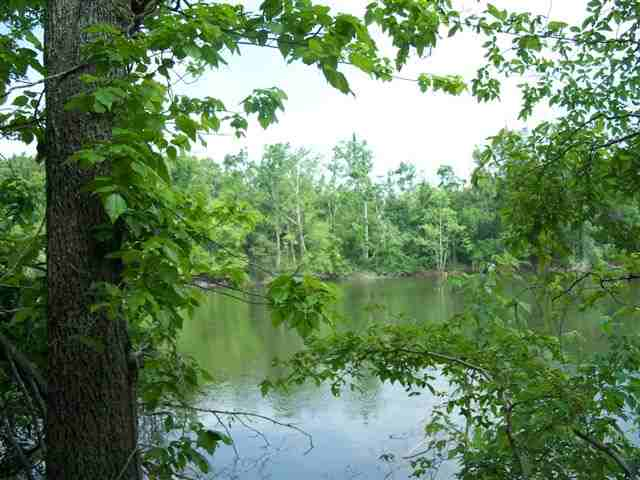 2.25 acres in Kuttawa, Kentucky