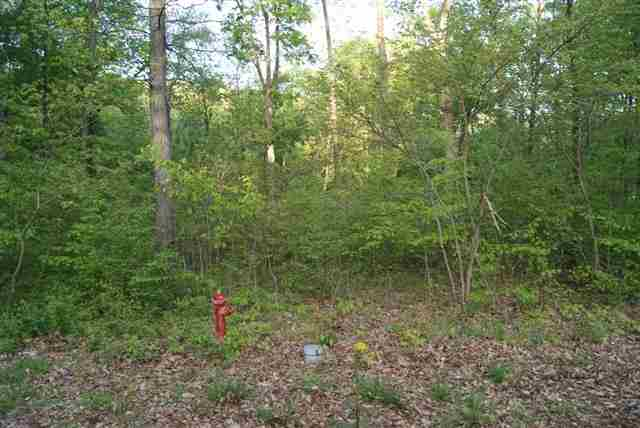 Lot 5 Cannon Hills South, Eddyville, KY 42038