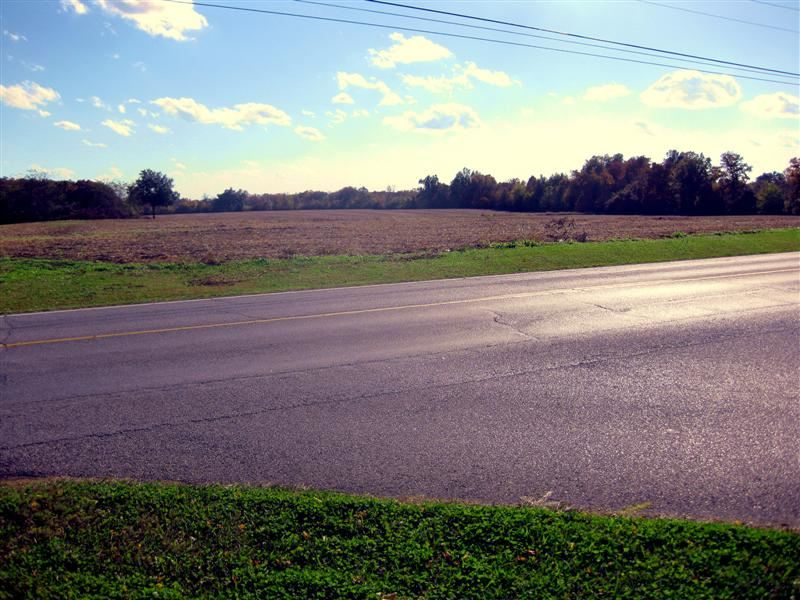 Image of Acreage for Sale near Murray, Kentucky, in Calloway county: 66.00 acres