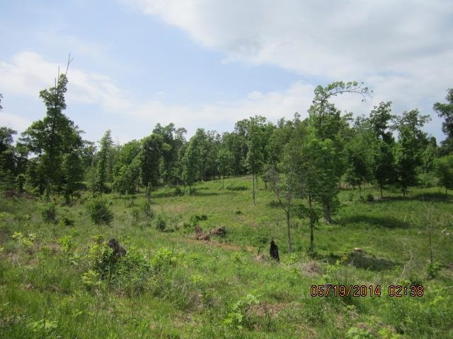 1.71 acres Gilbertsville, KY