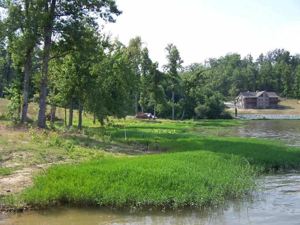 1.5 acres Dawson Springs, KY