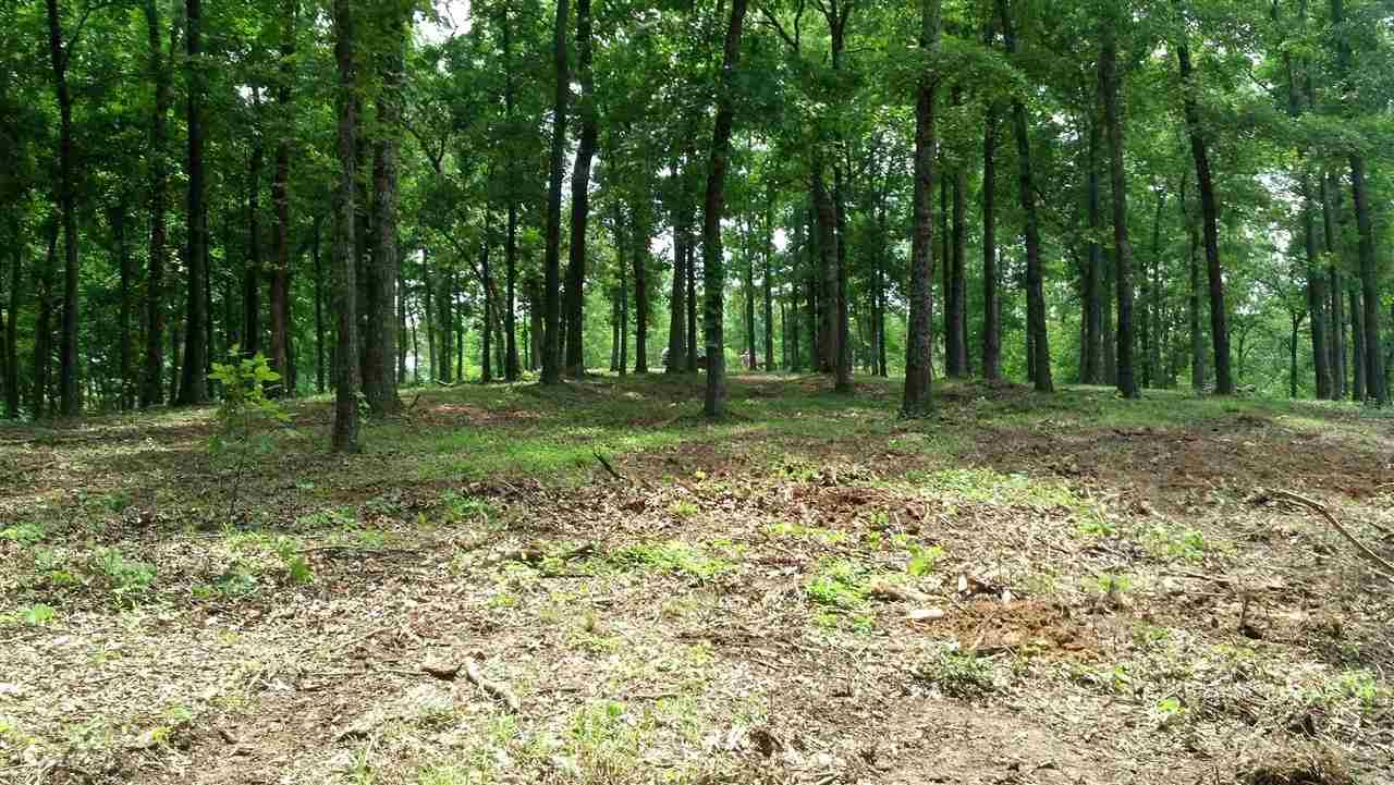 Hillview Dr, Murray, KY 42071