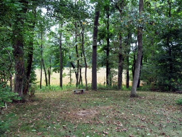 87 acres by Farmington, Kentucky for sale
