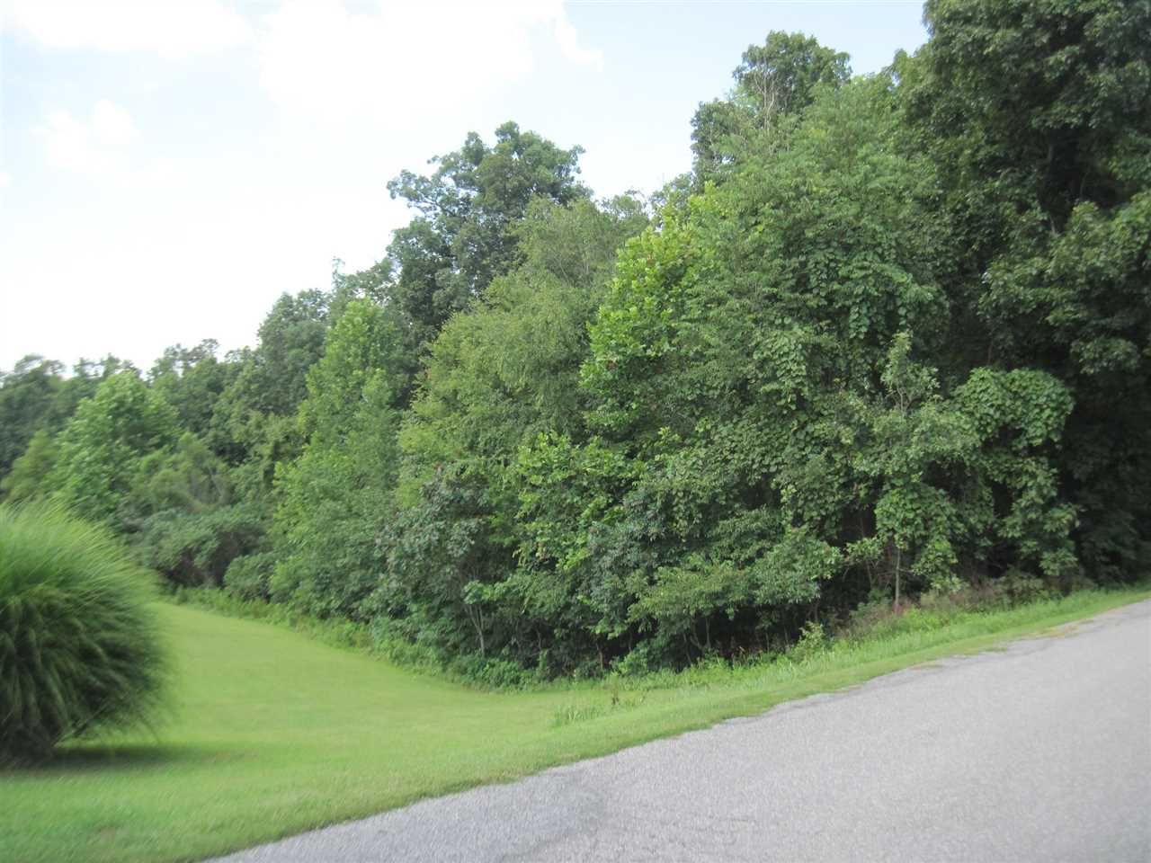 Real Estate for Sale, ListingId: 34713378, Gilbertsville,KY42044