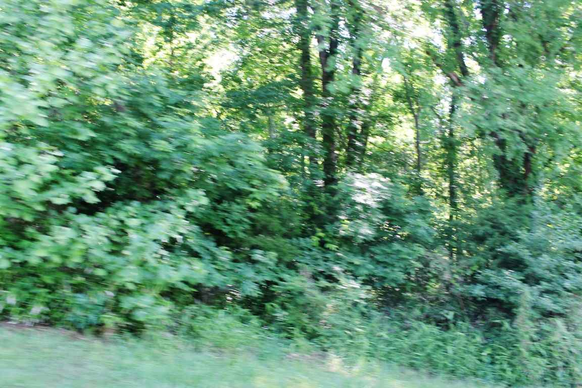 primary photo for LOT 24 BLUEGRASS HEIGHTS, Eddyville, KY 42038, US